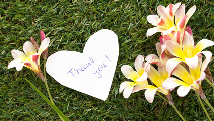 Note in shape of heart with words Thank you, with flowers on green grass.