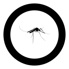 Mosquito icon black color in circle