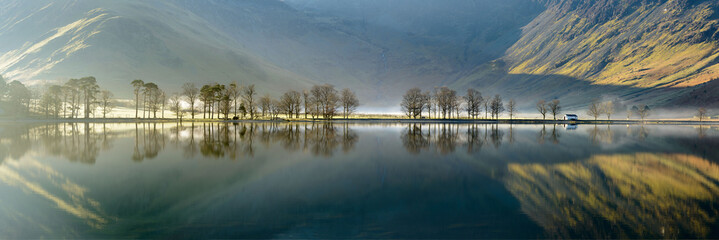 Buttermere trees pano