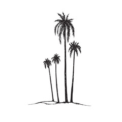 Palm tree silhouette, hand drawn doodle, sketch in pop art style, black and white vector illustration