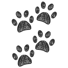 Black doodle paw prints steps