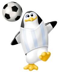 pinguino  argentina