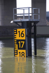 Rod with water level under the van Brienenoord bridge in Rotterdam