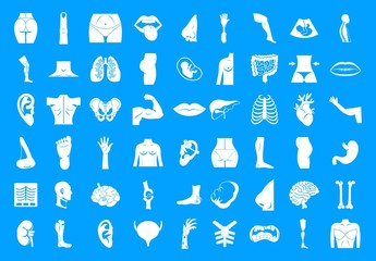 Human body icon blue set vector