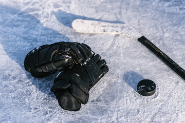 things are a hockey player on the ice
