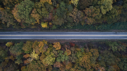 Aerial view of road amidst trees in forest during autumn