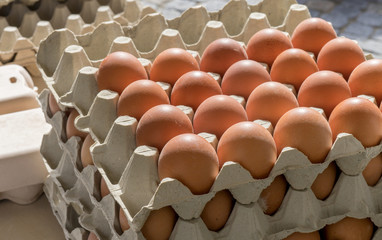 egg cartons and eggs / Stack with cartons and brown eggs