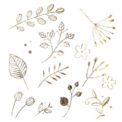Golden leaf design elements. Decoration elements for invitation, wedding cards, valentines day, greeting cards. Isolated on white background. Vintage Floral background.