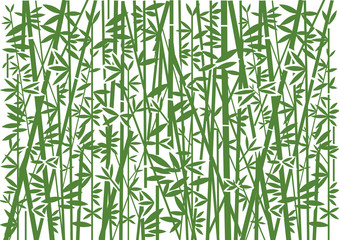 Bamboo, Decorative green  background.