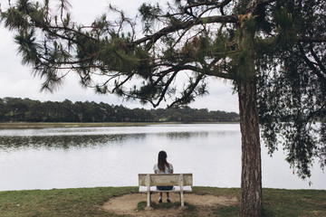 Rear view of woman sitting on bench by lake at park