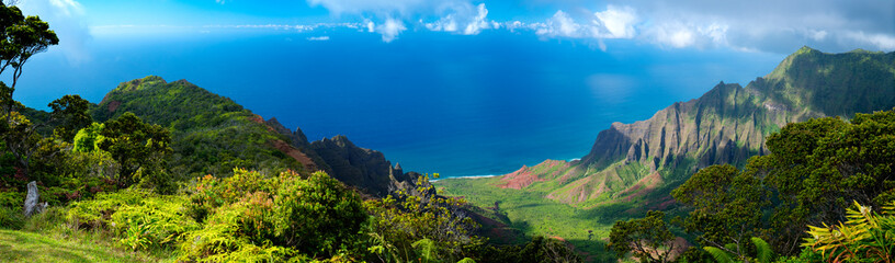Hawaii Panorama of the Ocean in Kauai Wall mural