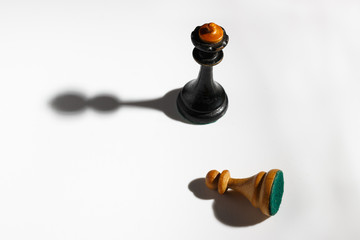 White pawn in front of the king on a white background