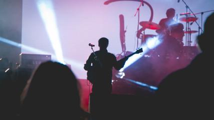 Artist in concert