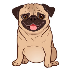 Pug dog cartoon illustration. Cute friendly fat chubby fawn sitting pug puppy, smiling with tongue out. Pets, dog lovers, animal themed design element isolated on white.