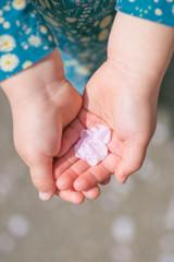 子どもの手のひらに乗せた桜の花びら_縦