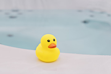 Small yellow rubber duck in bathroom background. Bath time concept