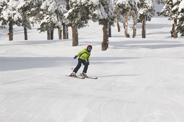 Skiing on a beautiful snow forest landscape. Winter sport