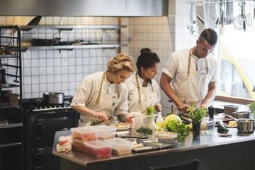 Multi-ethnic chefs preparing food on kitchen counter at restaurant