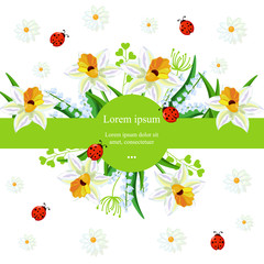 Narcissus flowers background Vector. Spring Holidays illustrations