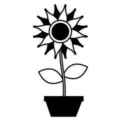 potted sunflower flower decoration ornament vector illustration