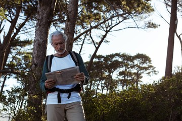 Senior hiker looking at map in forest