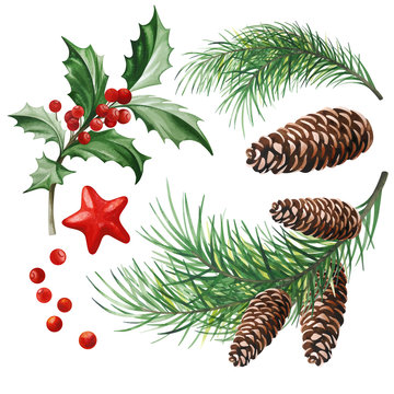 Christmas Symbols - Holly Leaves, Christmas Tree with Cones and Star on White Background.