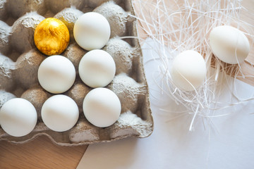 Golden egg among white hen eggs in carton pack.