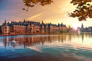 Sunset on the Binnenhof building and The Hague city reflected on the pond with a swan swimming on, Netherlands Wall mural