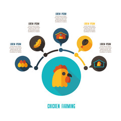 Chicken farming icon and agriculture infographics