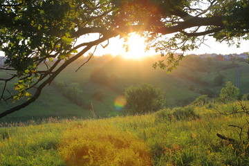 Sunset on a warm summer evening