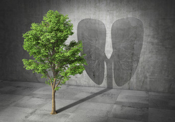 Eco concept. Green tree cast shadow in form of lungs. 3d illustration