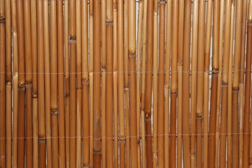 bamboo background at the wall