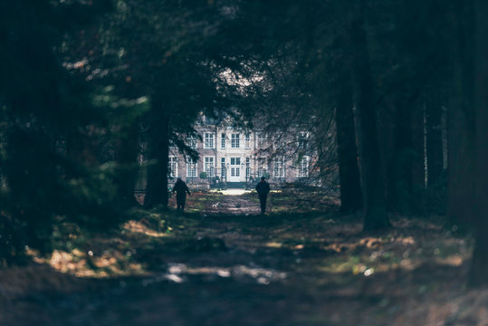Country manor house lit by sunlight at the end of dark forest path.