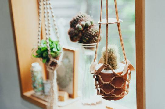 窓辺に飾られた植物のインテリア