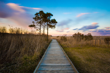 Bodie Island Lighthouse Pathway