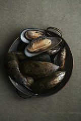 Raw kiwi mussels in copper bowl on pewter-colored background