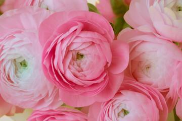 Pink anemone flower bouquet