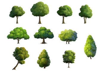 Illustration of trees  isolated on white background