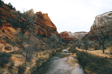 River flowing amidst mountains at Zion National Park
