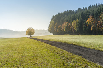 Road in the countryside in autumn, Heinstetten, Baden-Wurttemberg, Germany, Europe