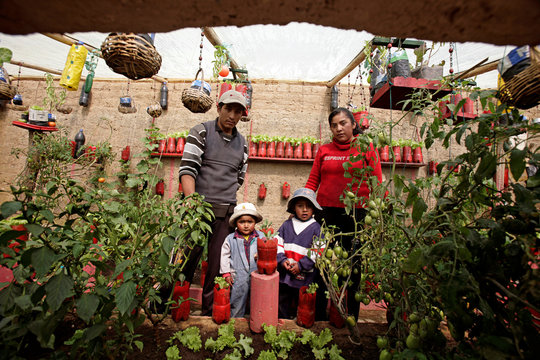 Hector Tarqui's family poses for a picture in their kitchen garden where they grow over 15 different kinds of vegetables in El Alto
