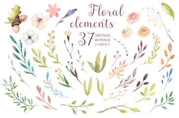 Set vintage watercolor green elements of flowers, garden and wild flowers, leaves, branches flowers, illustration isolated, greenery bohemian bouquets