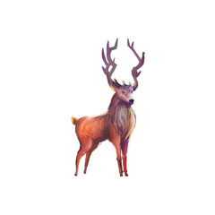 The Deer isolated on White Background with Fantastic, Realistic and Futuristic Style. Video Game's Digital CG Artwork, Concept Illustration, Realistic Cartoon Style Scene Design