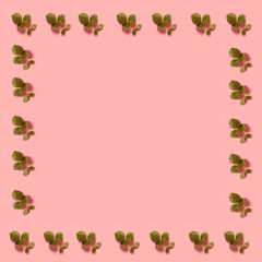 Green little leaves on a pastel pink background
