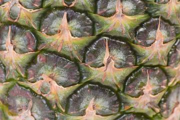 Pineapple fruit texture
