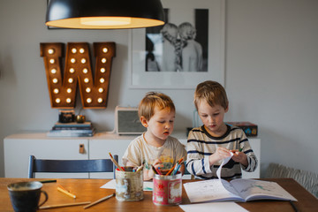 Brothers doing homework at home