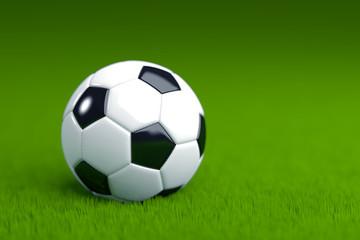 Soccer Ball on Grass 3D Render