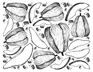 Hand Drawn of Chayote Fruits on White Background