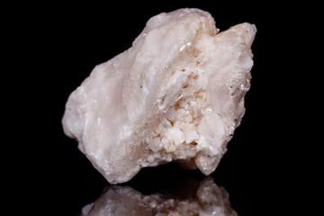 Macro mineral stone Amphibolite in quartz on black background