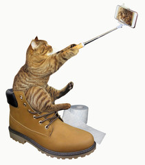 The cat sits on a big yellow boot and takes a selfie. White background.